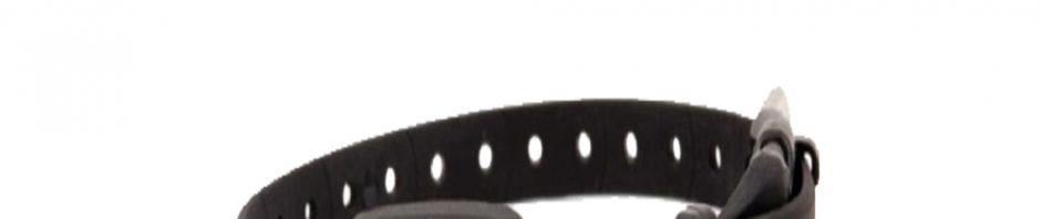 colliers anti-aboiement